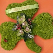 Shamrock Tribute